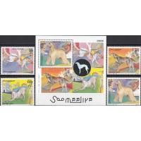 Фауна Сомали 2003, Собаки полная серия